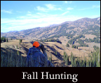 hunting trips